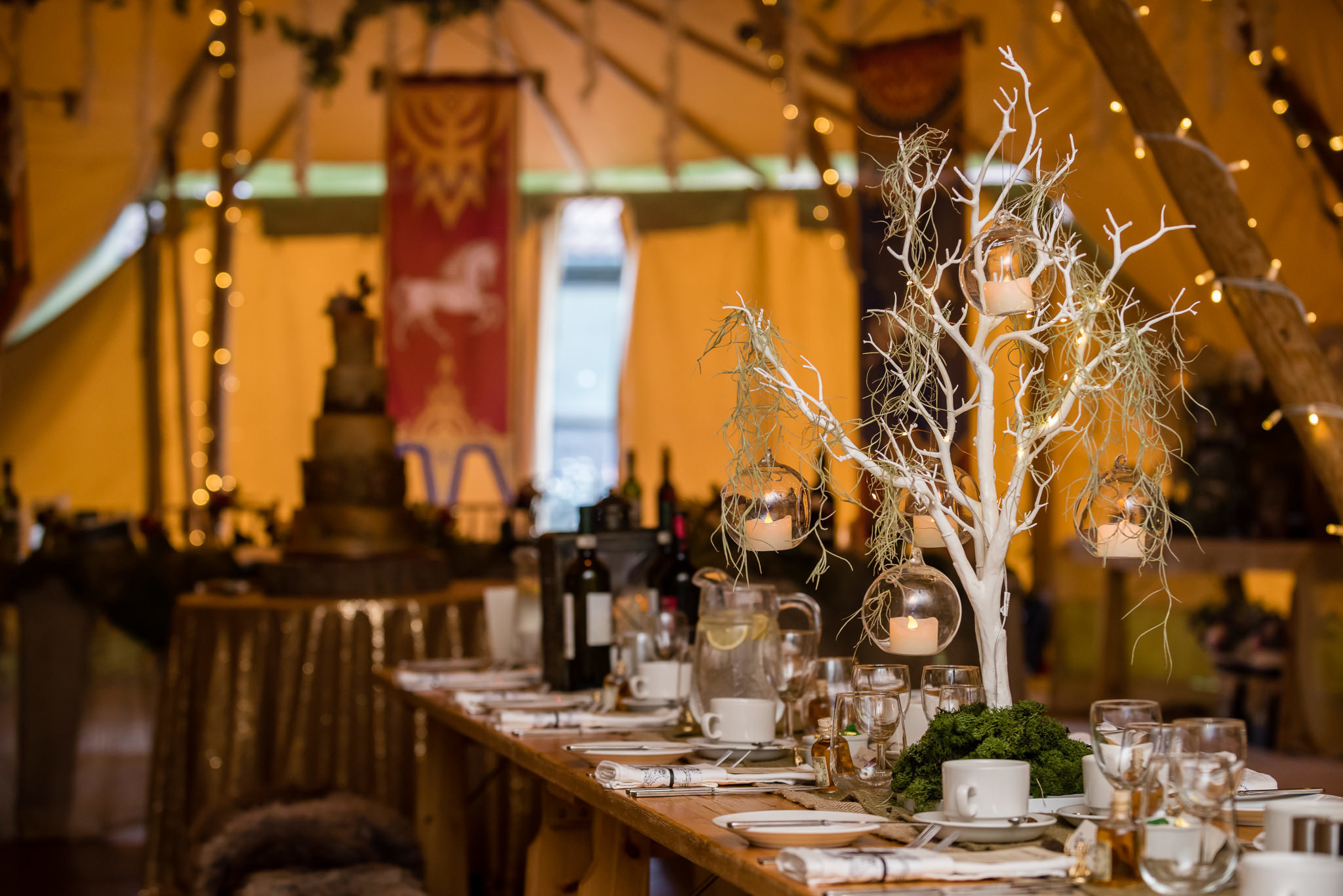 Inside the tipi for a Lord of the Rings themed wedding