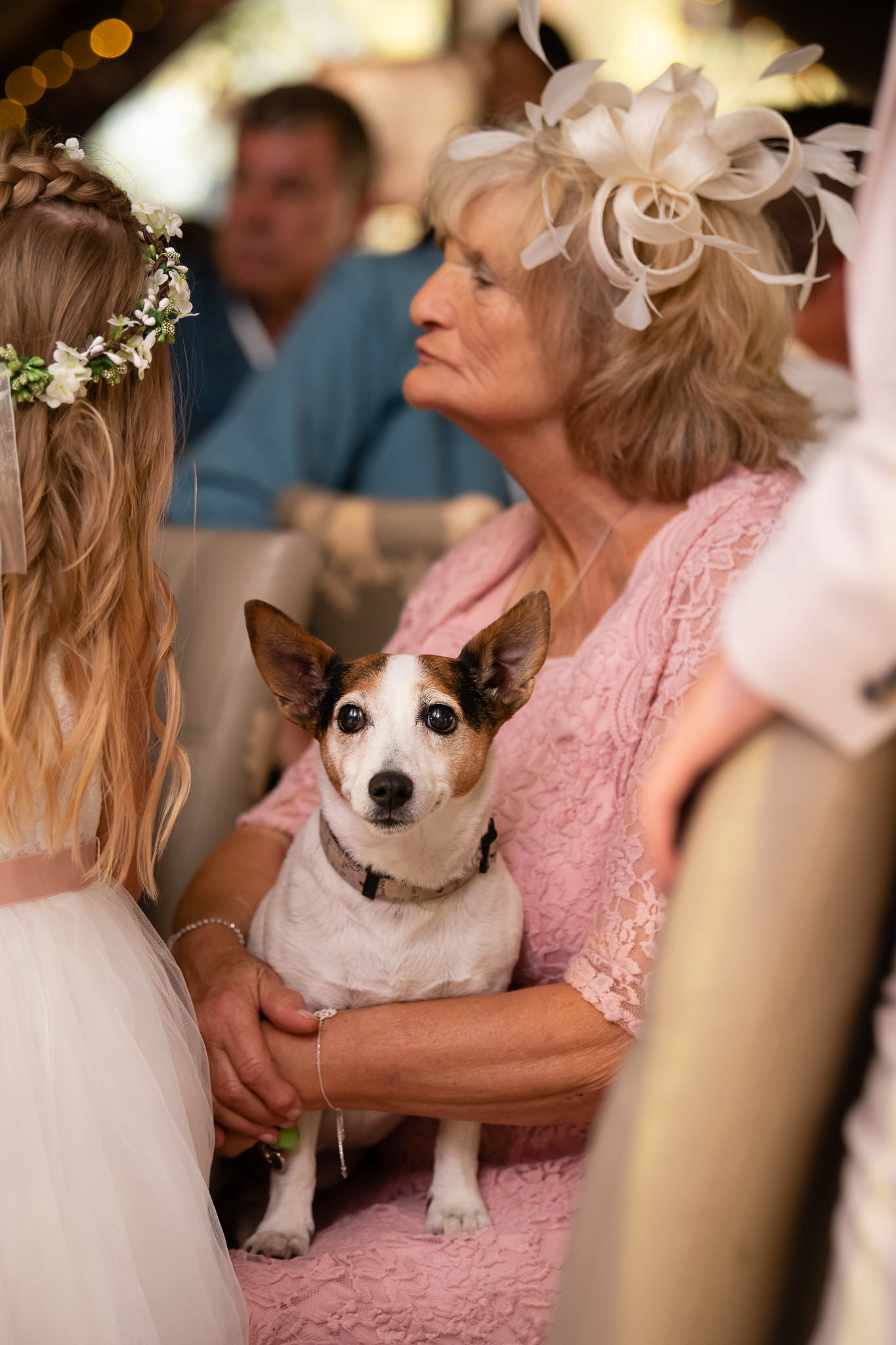 The Mother of the Bride's dog.